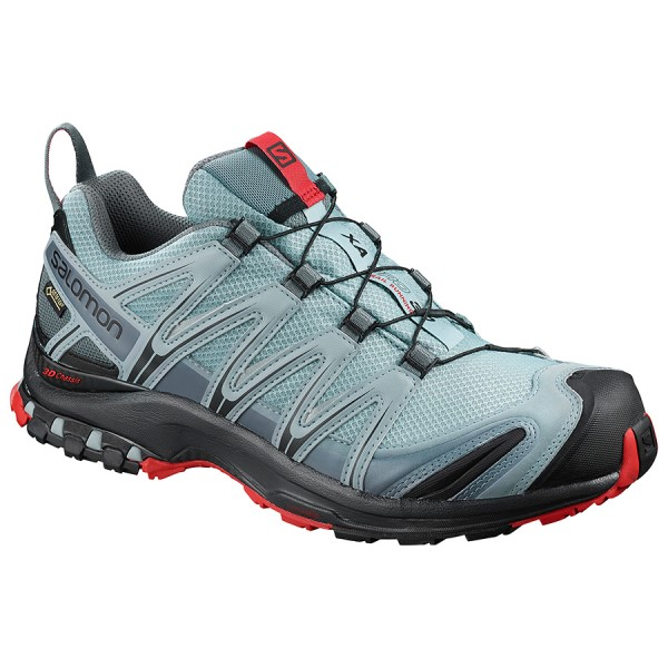 Salomon XA Pro 3D GTX - Mens Trail Hiking Shoes - Lead/Black/Barbados Cherry