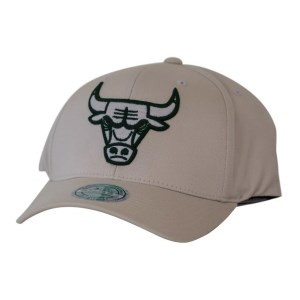 Mitchell & Ness NBA Chicago Bulls Stone Forest Basketball Cap